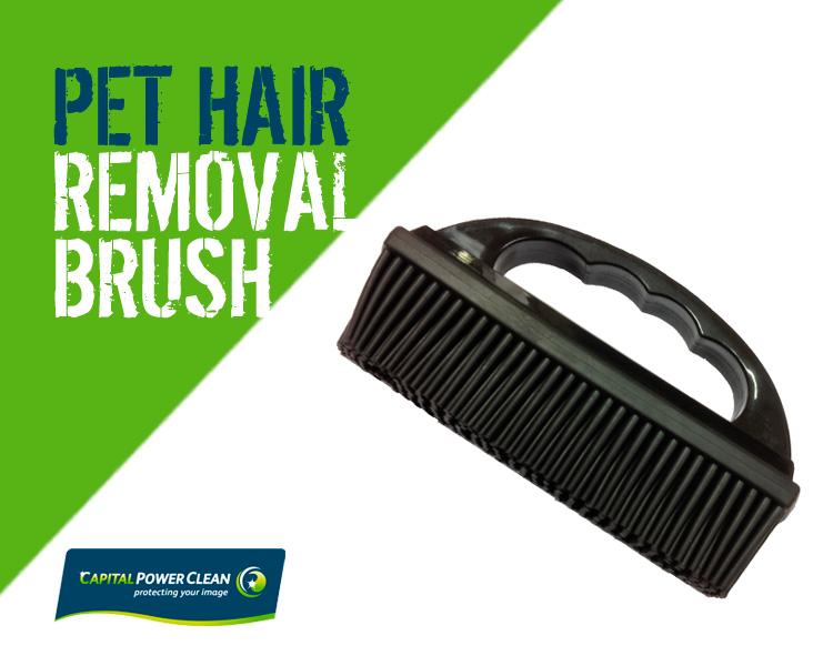 pet hair remover brush. Black Bedroom Furniture Sets. Home Design Ideas